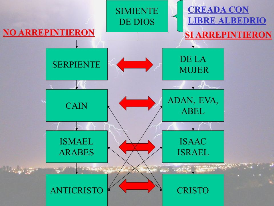 SIMIENTE DE DIOS. CREADA CON. LIBRE ALBEDRIO. NO ARREPINTIERON. SI ARREPINTIERON. SERPIENTE. DE LA.