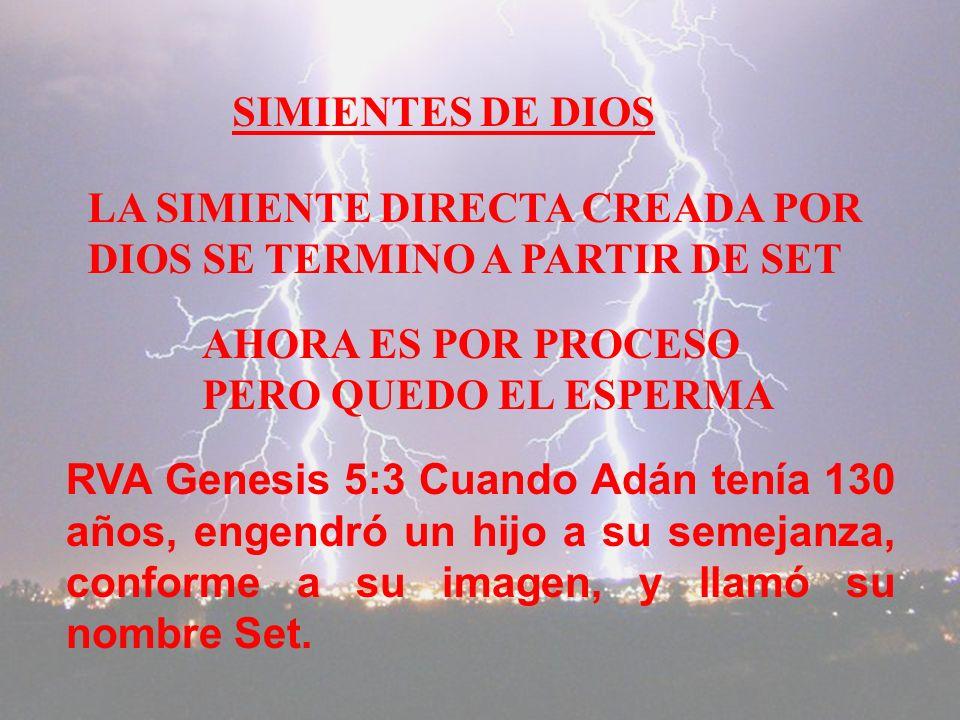 SIMIENTES DE DIOS LA SIMIENTE DIRECTA CREADA POR. DIOS SE TERMINO A PARTIR DE SET. AHORA ES POR PROCESO.