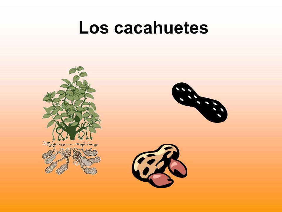 Los cacahuetes