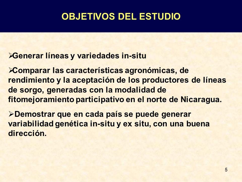 OBJETIVOS DEL ESTUDIO Generar líneas y variedades in-situ