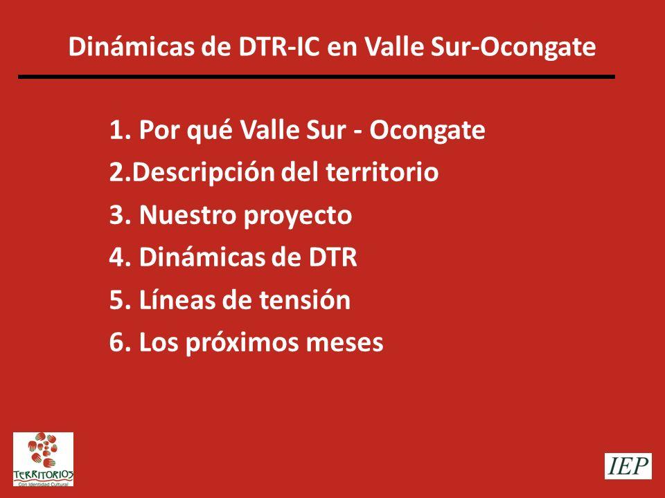 Dinámicas de DTR-IC en Valle Sur-Ocongate