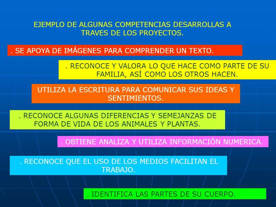 EJEMPLO DE ALGUNAS COMPETENCIAS DESARROLLAS A TRAVES DE LOS PROYECTOS.