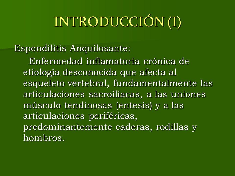 INTRODUCCIÓN (I) Espondilitis Anquilosante:
