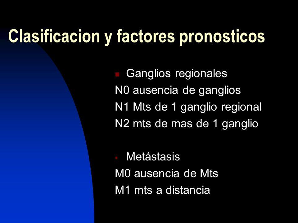 Clasificacion y factores pronosticos
