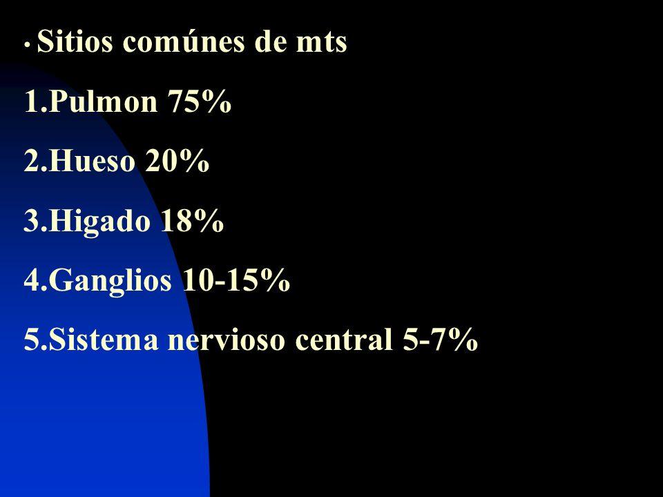 Sistema nervioso central 5-7%