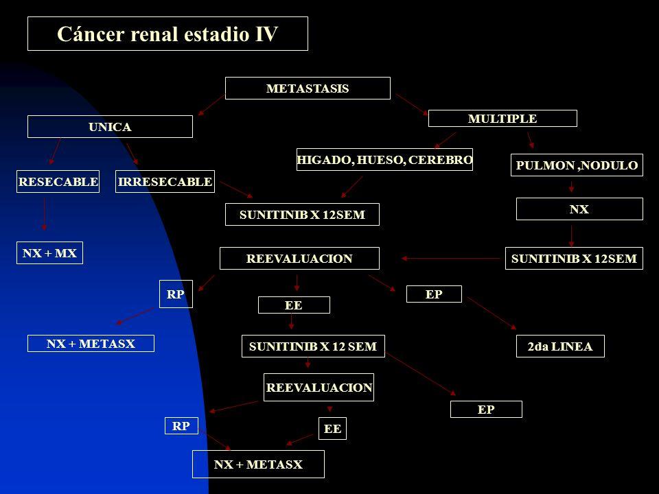 Cáncer renal estadio IV