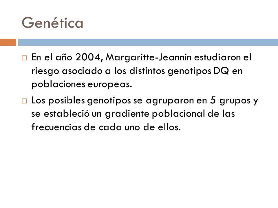 Genética En el año 2004, Margaritte-Jeannin estudiaron el riesgo asociado a los distintos genotipos DQ en poblaciones europeas.