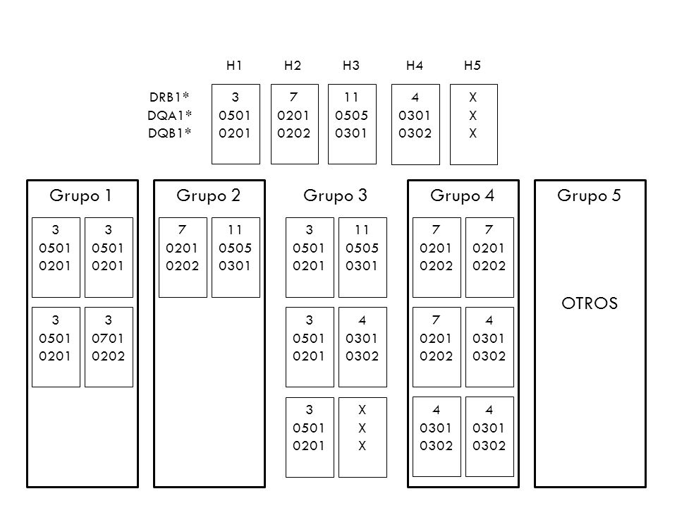 Grupo 1 Grupo 2 Grupo 3 Grupo 4 Grupo 5 OTROS H1 H2 H3 H4 H5 DRB1*