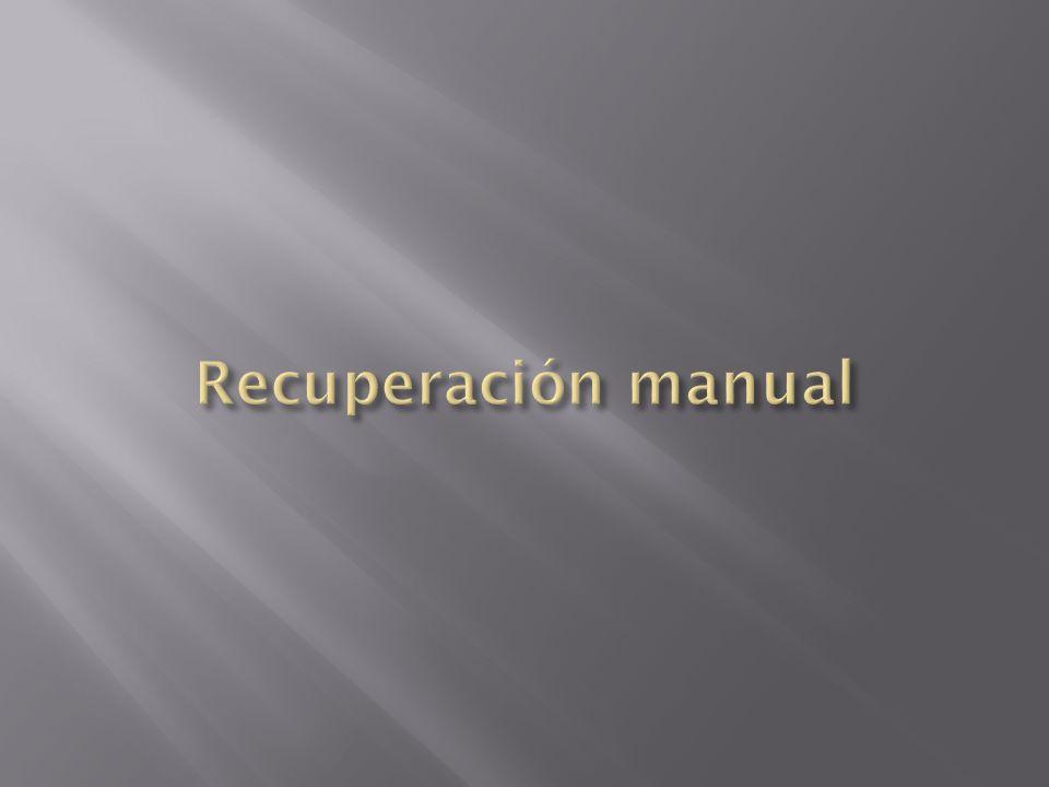 Recuperación manual