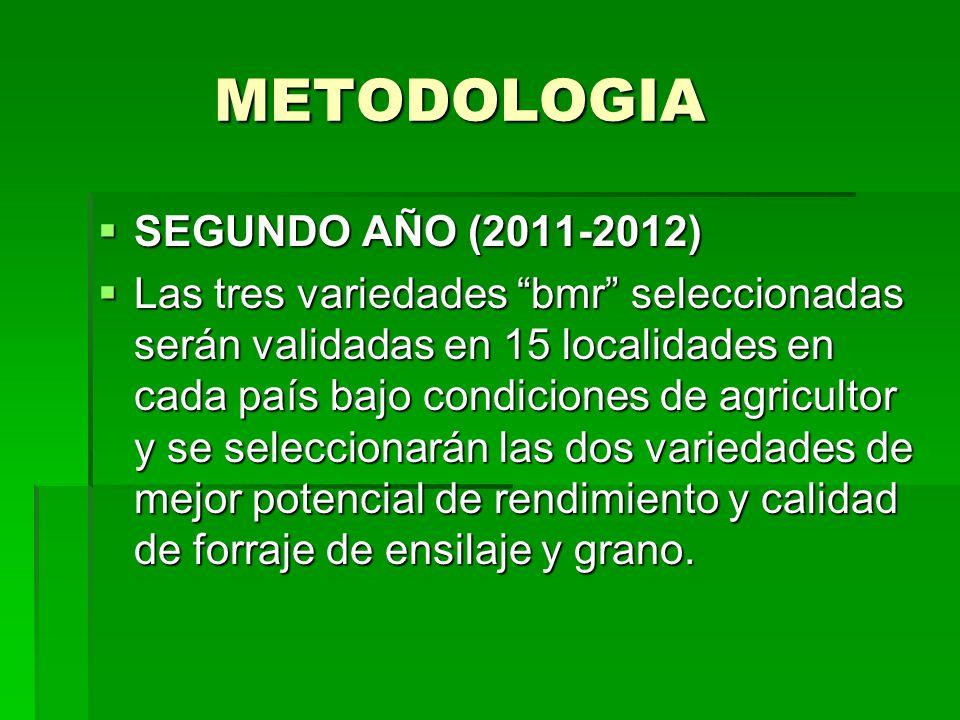 METODOLOGIA SEGUNDO AÑO (2011-2012)