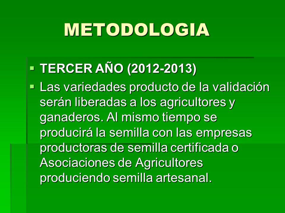METODOLOGIA TERCER AÑO (2012-2013)