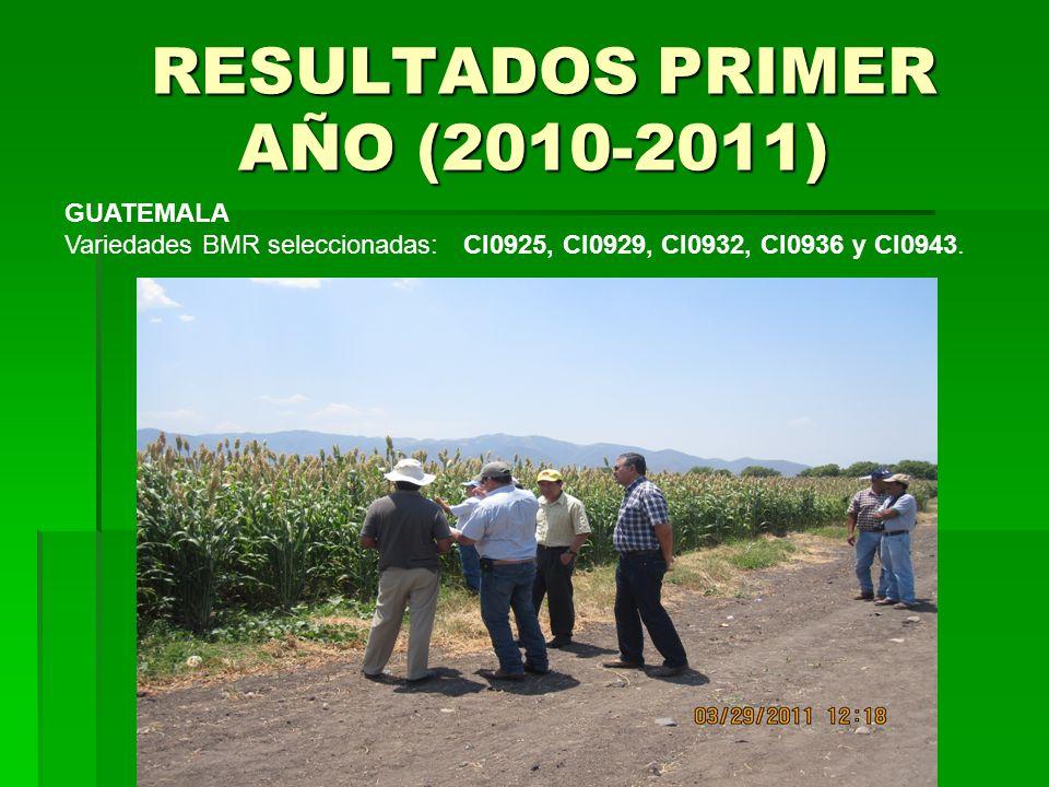 RESULTADOS PRIMER AÑO (2010-2011)