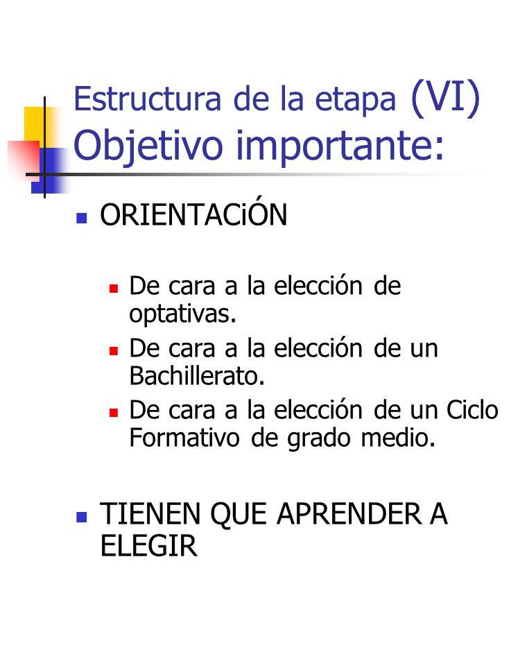 Estructura de la etapa (VI) Objetivo importante: