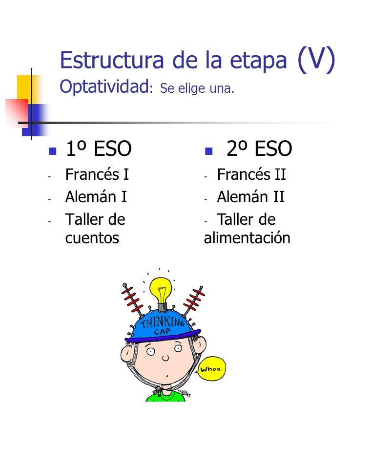 Estructura de la etapa (V) Optatividad: Se elige una.