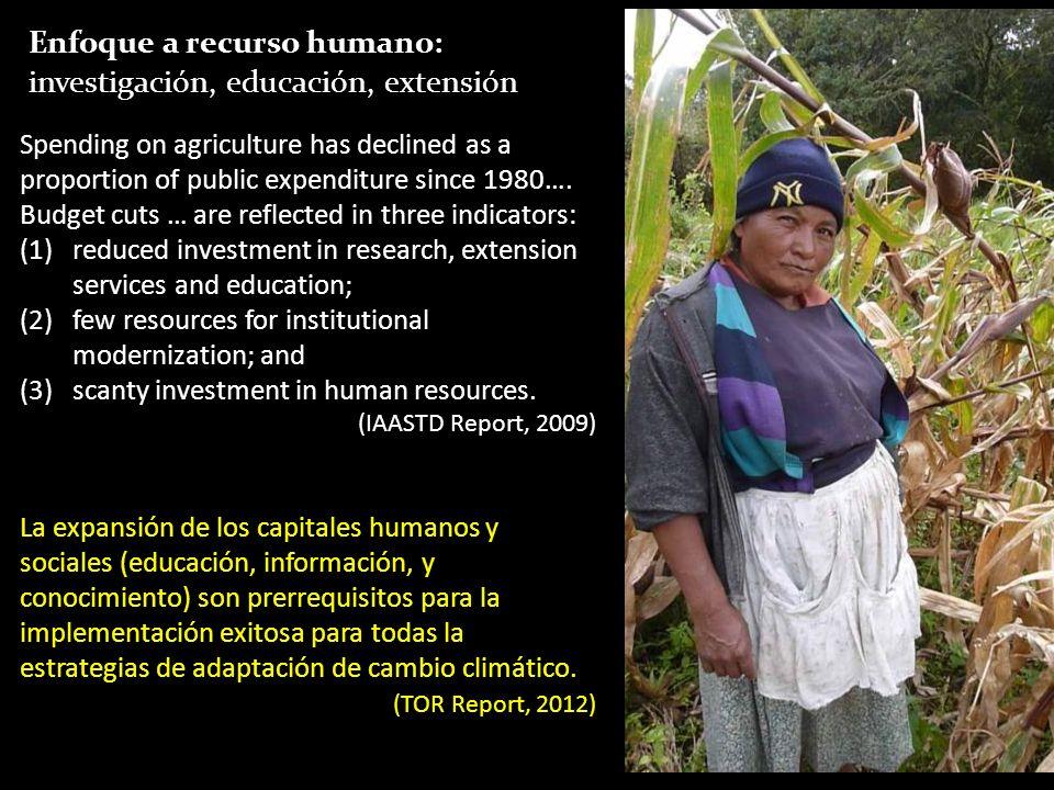 Enfoque a recurso humano: investigación, educación, extensión