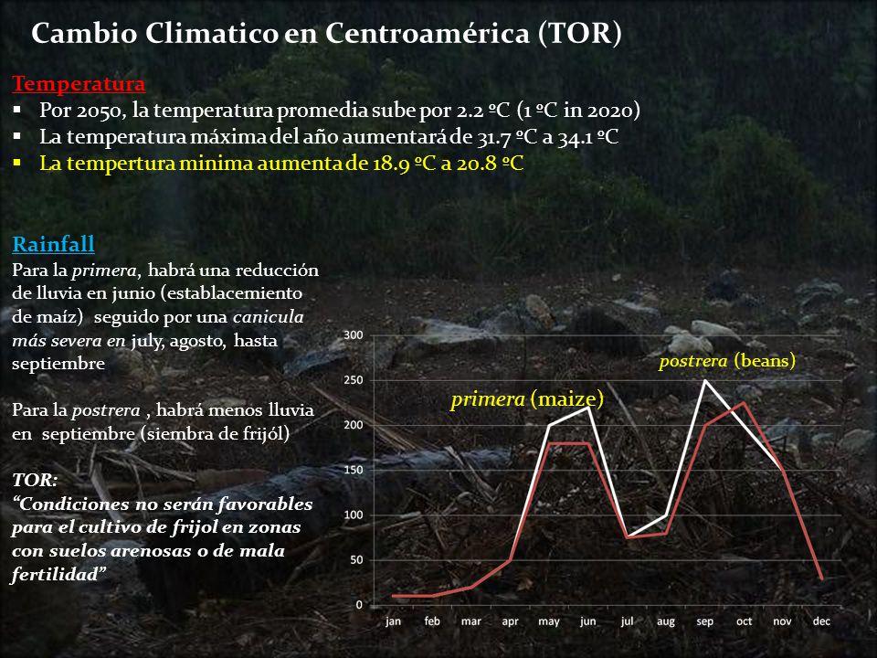 Cambio Climatico en Centroamérica (TOR)