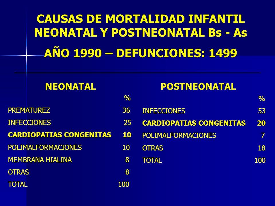 CAUSAS DE MORTALIDAD INFANTIL NEONATAL Y POSTNEONATAL Bs - As