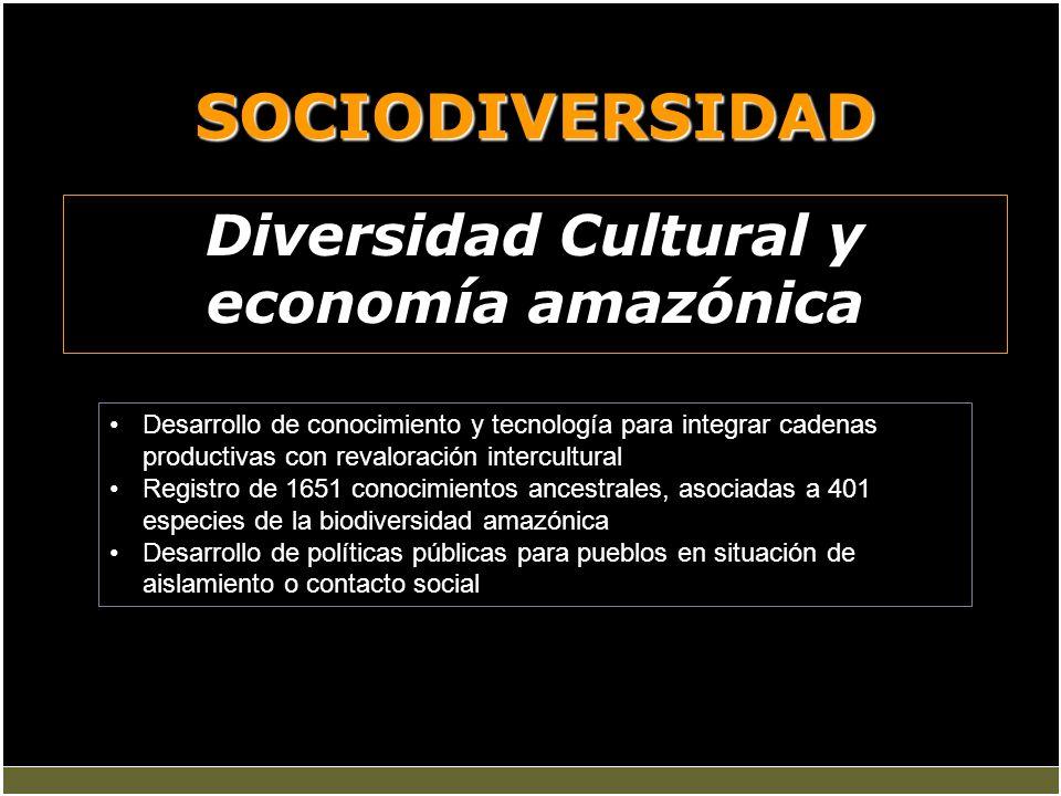 Diversidad Cultural y economía amazónica