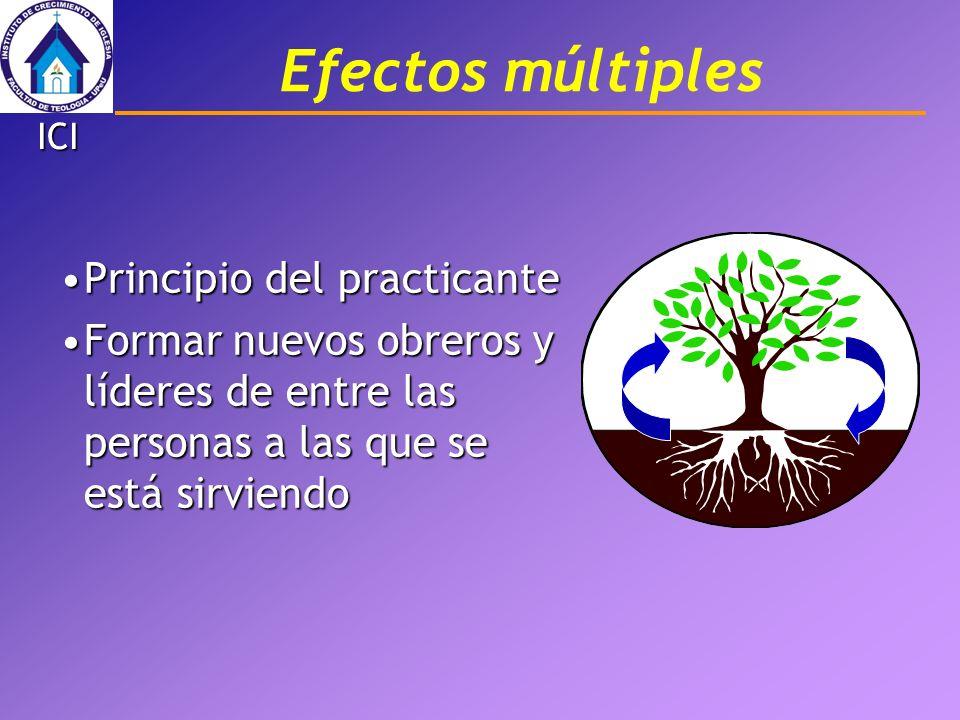Efectos múltiples Principio del practicante