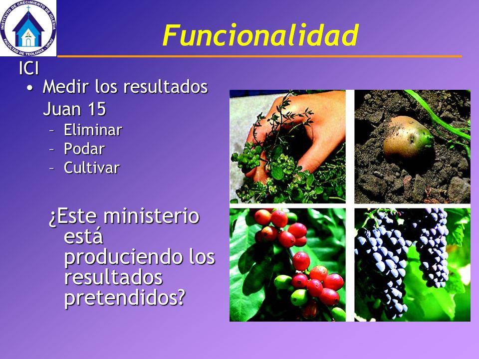 Funcionalidad ICI. Medir los resultados Juan 15.