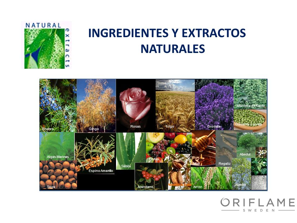 INGREDIENTES Y EXTRACTOS NATURALES