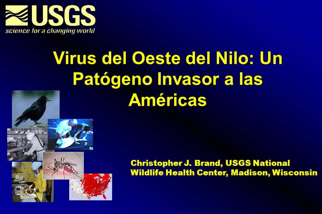 Virus del Oeste del Nilo: Un Patógeno Invasor a las Américas