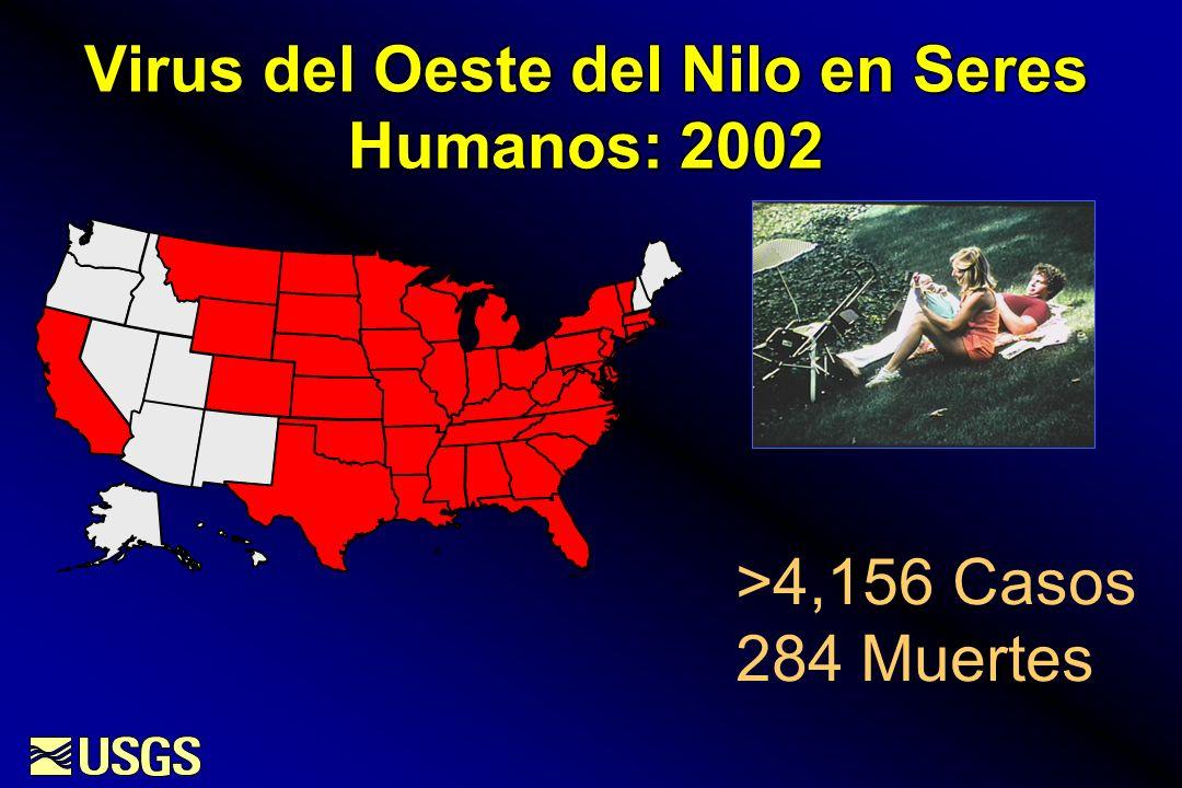 Virus del Oeste del Nilo en Seres Humanos: 2002