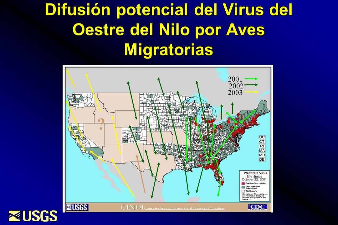 Difusión potencial del Virus del Oestre del Nilo por Aves Migratorias