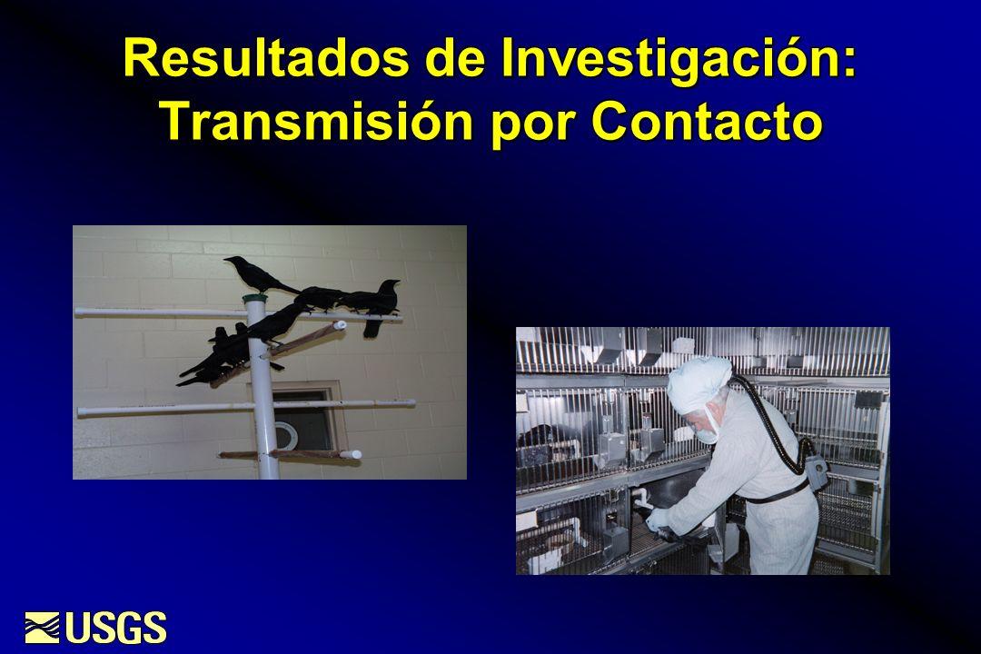 Resultados de Investigación: Transmisión por Contacto