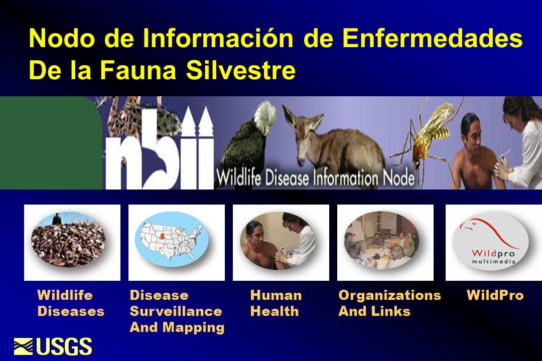 Nodo de Información de Enfermedades De la Fauna Silvestre