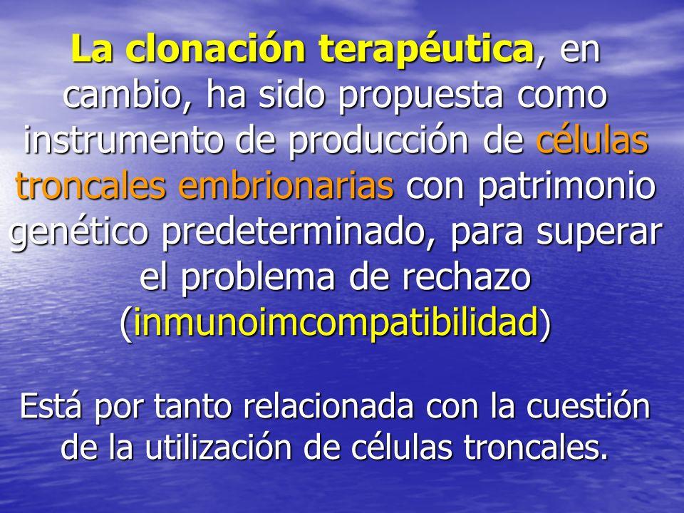 La clonación terapéutica, en cambio, ha sido propuesta como instrumento de producción de células troncales embrionarias con patrimonio genético predeterminado, para superar el problema de rechazo (inmunoimcompatibilidad) Está por tanto relacionada con la cuestión de la utilización de células troncales.