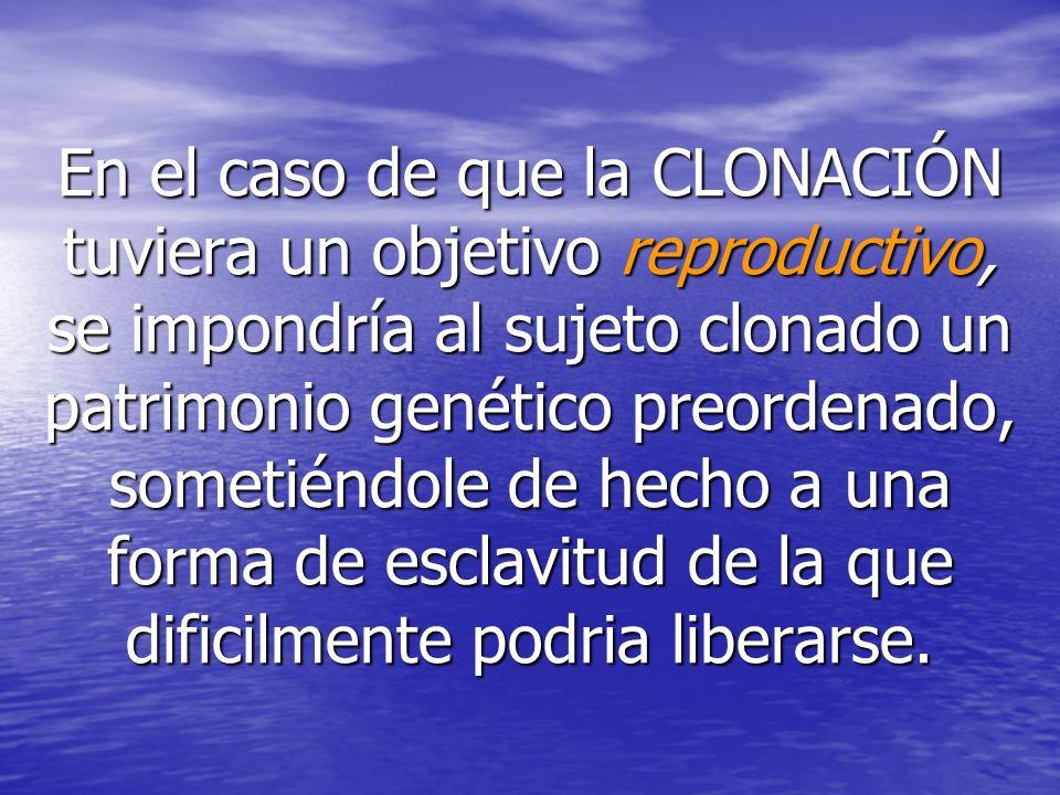 En el caso de que la CLONACIÓN tuviera un objetivo reproductivo, se impondría al sujeto clonado un patrimonio genético preordenado, sometiéndole de hecho a una forma de esclavitud de la que dificilmente podria liberarse.