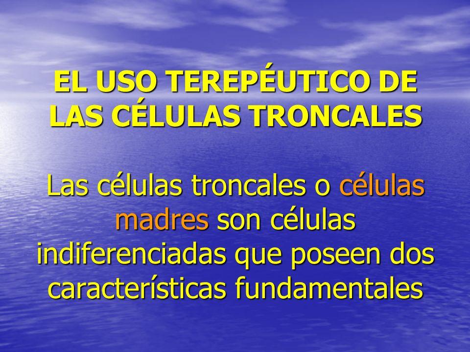 EL USO TEREPÉUTICO DE LAS CÉLULAS TRONCALES Las células troncales o células madres son células indiferenciadas que poseen dos características fundamentales