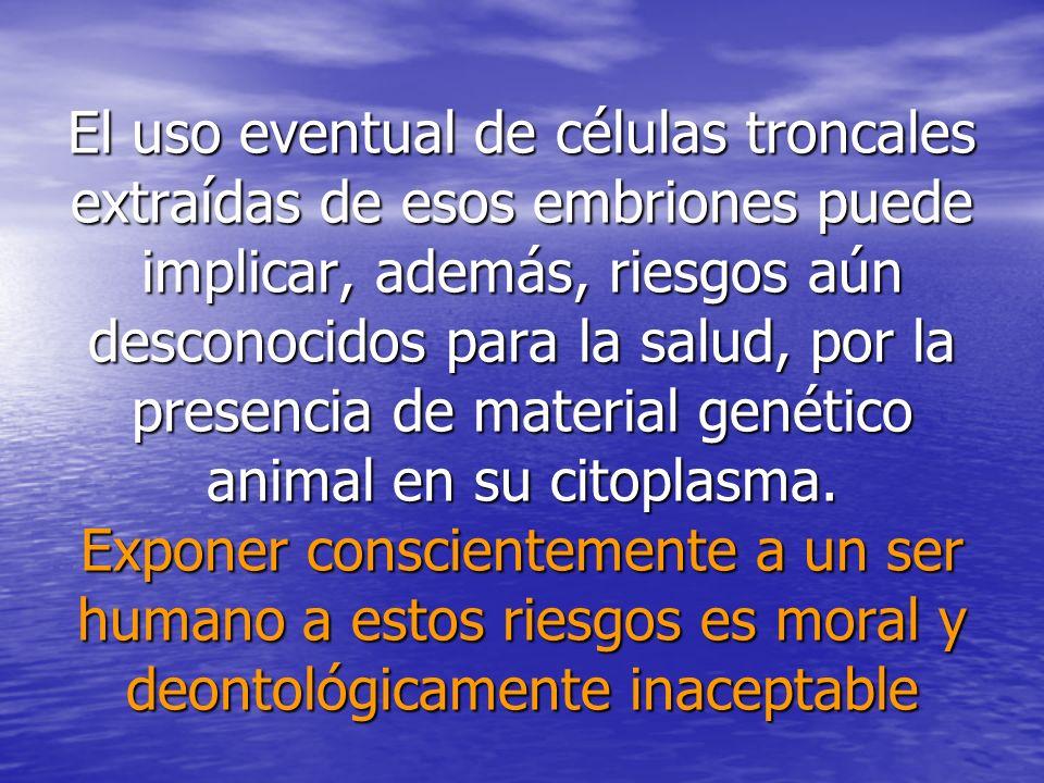El uso eventual de células troncales extraídas de esos embriones puede implicar, además, riesgos aún desconocidos para la salud, por la presencia de material genético animal en su citoplasma.