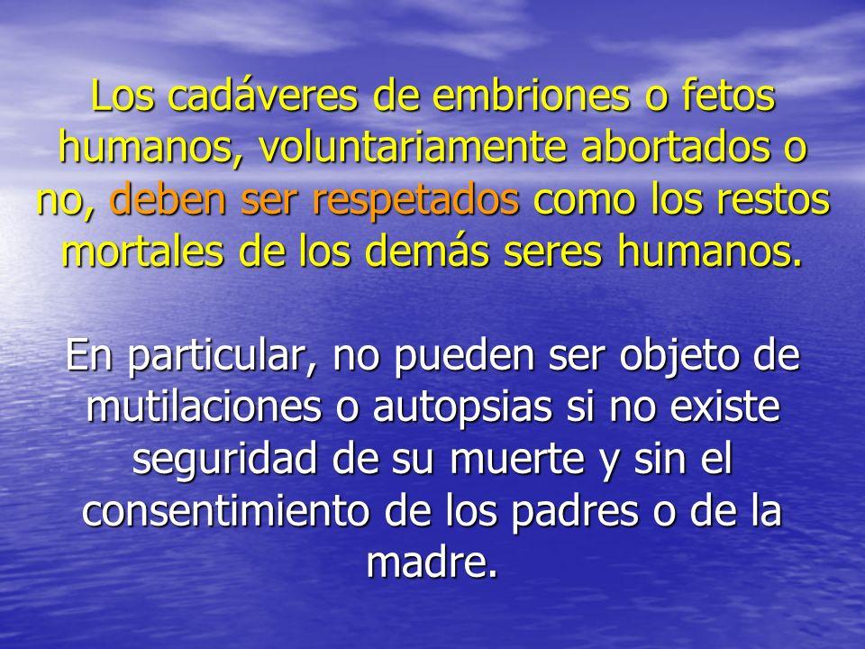 Los cadáveres de embriones o fetos humanos, voluntariamente abortados o no, deben ser respetados como los restos mortales de los demás seres humanos.