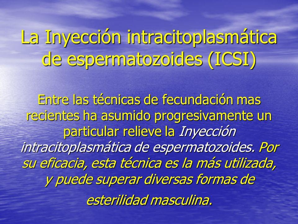La Inyección intracitoplasmática de espermatozoides (ICSI) Entre las técnicas de fecundación mas recientes ha asumido progresivamente un particular relieve la Inyección intracitoplasmática de espermatozoides.