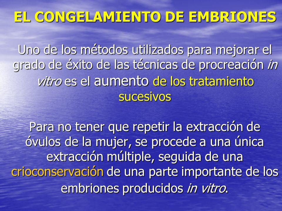 EL CONGELAMIENTO DE EMBRIONES Uno de los métodos utilizados para mejorar el grado de éxito de las técnicas de procreación in vitro es el aumento de los tratamiento sucesivos Para no tener que repetir la extracción de óvulos de la mujer, se procede a una única extracción múltiple, seguida de una crioconservación de una parte importante de los embriones producidos in vitro.