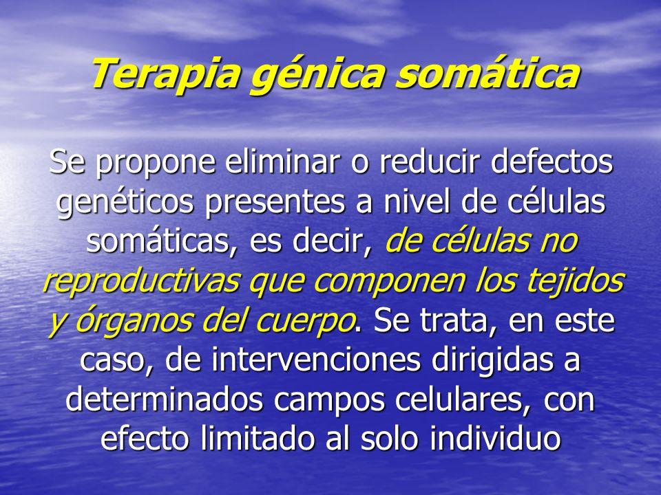 Terapia génica somática Se propone eliminar o reducir defectos genéticos presentes a nivel de células somáticas, es decir, de células no reproductivas que componen los tejidos y órganos del cuerpo.