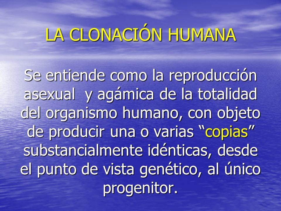 LA CLONACIÓN HUMANA Se entiende como la reproducción asexual y agámica de la totalidad del organismo humano, con objeto de producir una o varias copias substancialmente idénticas, desde el punto de vista genético, al único progenitor.