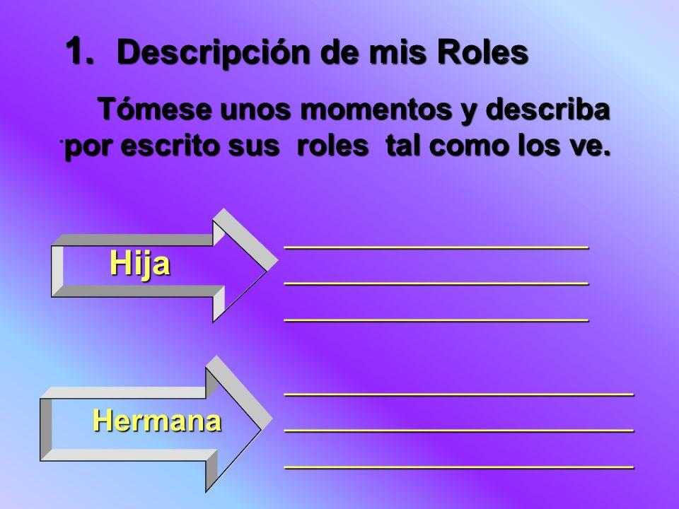 1. Descripción de mis Roles
