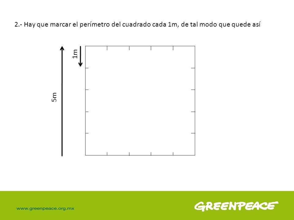 2.- Hay que marcar el perímetro del cuadrado cada 1m, de tal modo que quede así