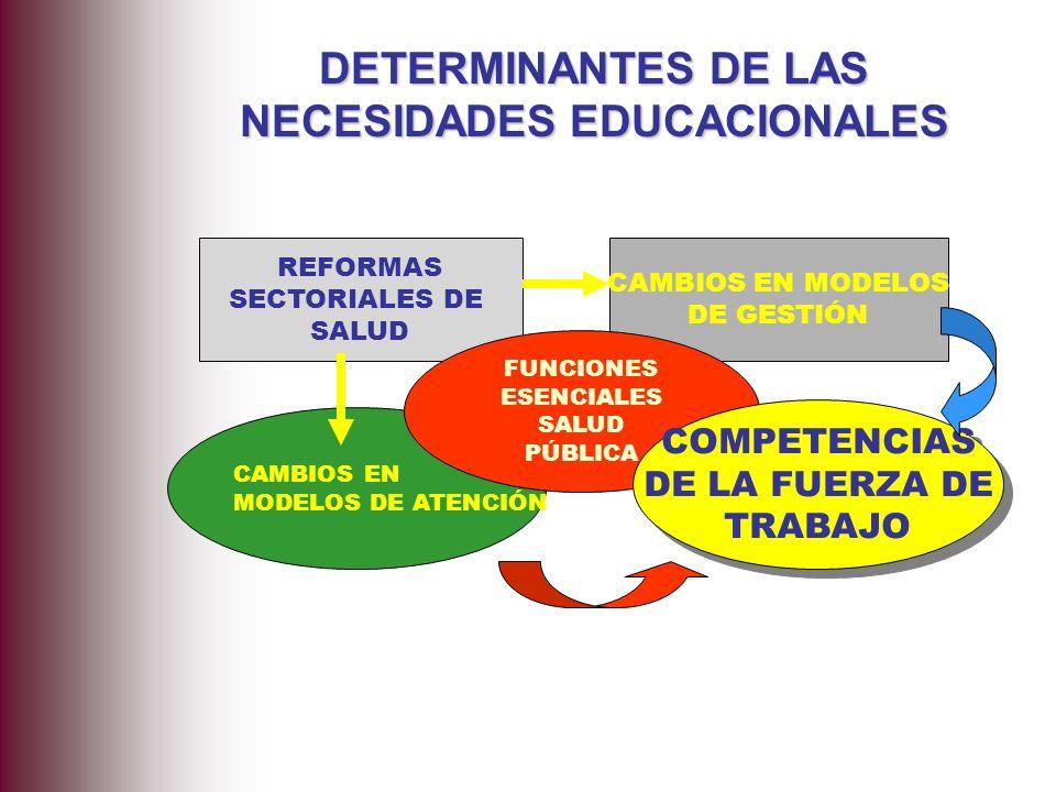 DETERMINANTES DE LAS NECESIDADES EDUCACIONALES