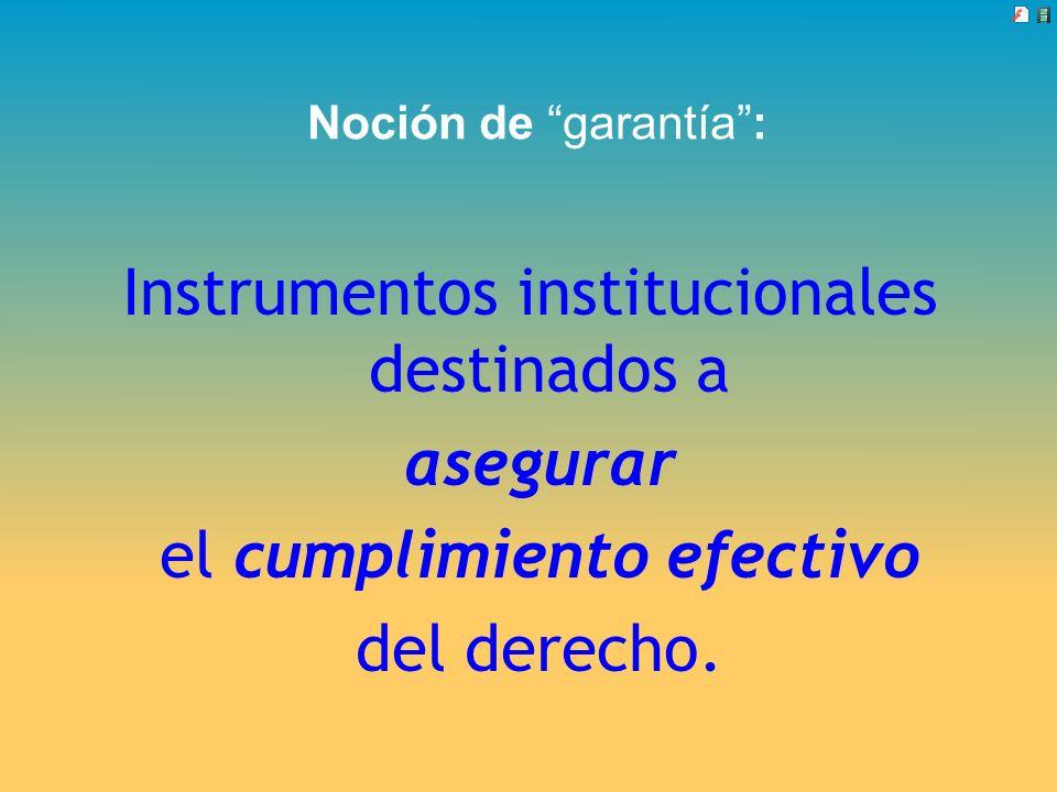 Instrumentos institucionales destinados a asegurar