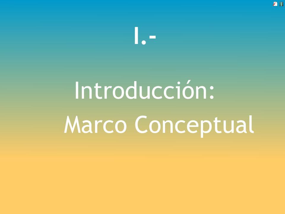 I.- Introducción: Marco Conceptual