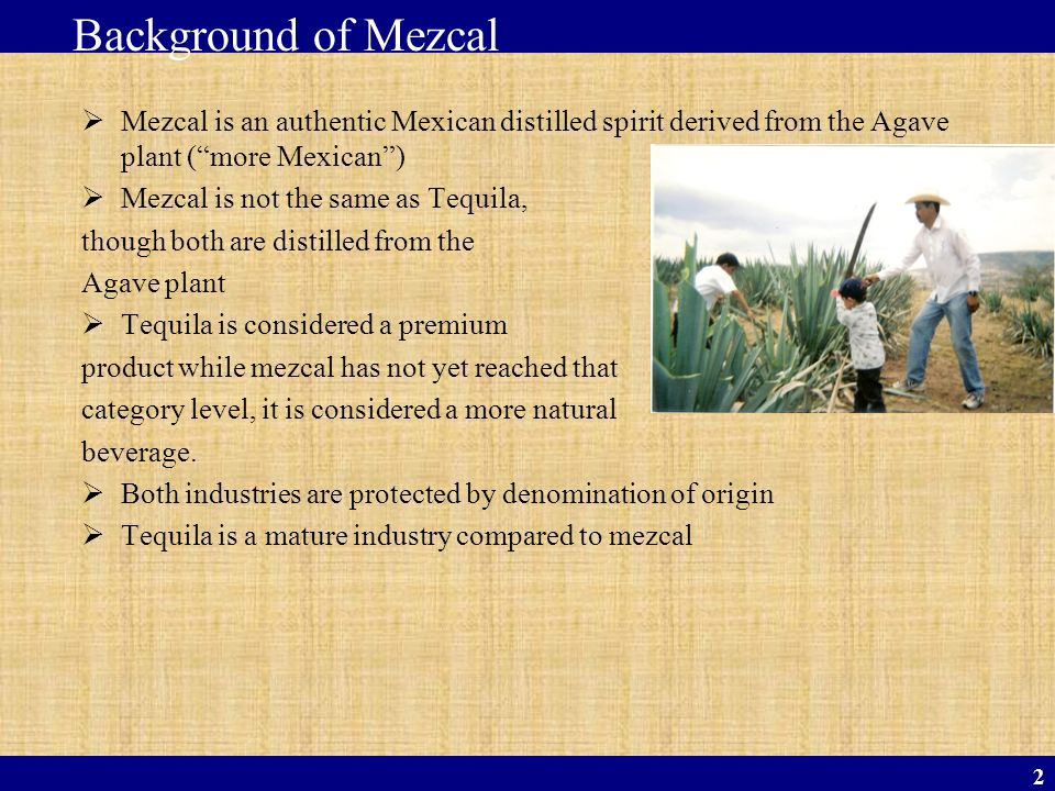 Background of Mezcal Mezcal is an authentic Mexican distilled spirit derived from the Agave plant ( more Mexican )