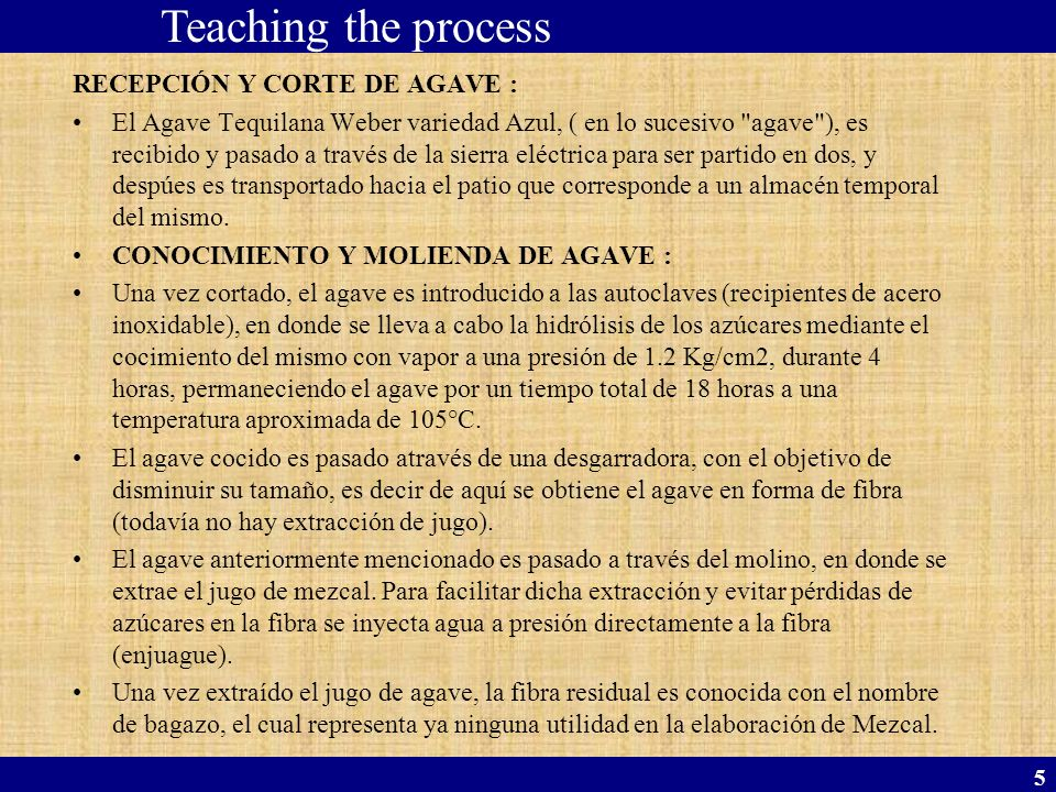 Teaching the process RECEPCIÓN Y CORTE DE AGAVE :