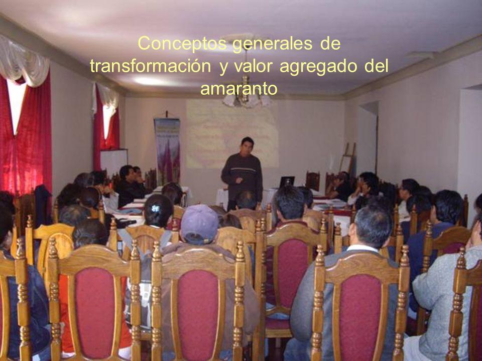 Conceptos generales de transformación y valor agregado del amaranto