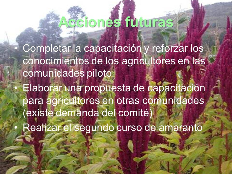 Acciones futuras Completar la capacitación y reforzar los conocimientos de los agricultores en las comunidades piloto.