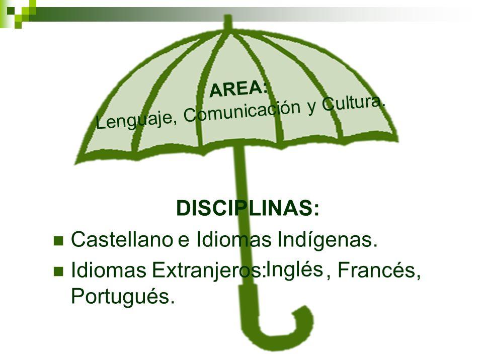 AREA: Lenguaje, Comunicación y Cultura.