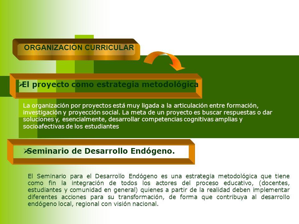 ORGANIZACIÓN CURRICULAR El proyecto como estrategia metodológica